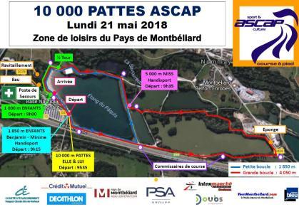 Plan 10 000 pattes