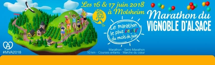 marathon-vignoble-alsace-980x300